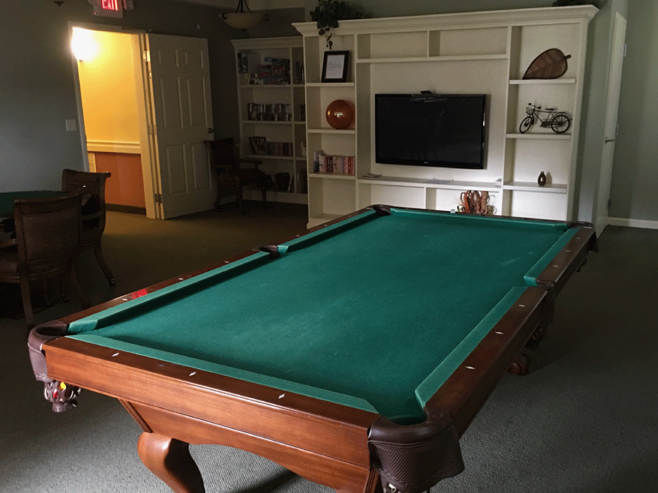 Chatham Pointe Pool Table